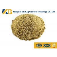 Full Fat Organic Fish Meal Fertilizer / Food Grade Fish Meal Enhance Poultry Nutrition Manufactures