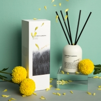 Refillable Scented Reed Diffuser , 6.8oz Essential Oil Reed Diffuser Manufactures