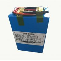 8000mah 9.6V Lithium Ion Battery For Farm Insecticidal Lamps Manufactures