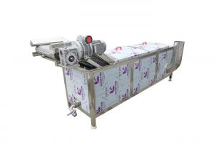 300kg/h 2.95kw Raspberry Vegetable Blanching Machine Manufactures