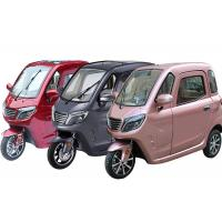 1500W EEC/COC Certificate 3 Wheel Cabin Trike OEM Color ABS Hnad Brake Manufactures