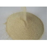 Brewery Biscuits Cake Bakery Yeast Functional Food Ingredients Manufactures
