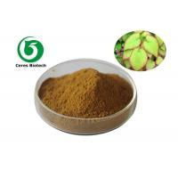 Penis Strong Epimedium Extract Powder Icariin 40% Solvent Extraction Medical Grade Manufactures