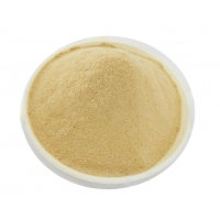 High Tolerance 10g 100g Active Yeast Chemical Food Ingredients Manufactures