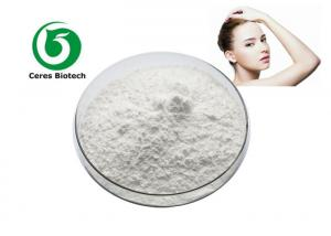 ISO Company Provide CAS 1135-24-6 Ferulic Acid Powder For Skin Care Manufactures