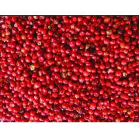 Star Aniseeds Product Name:Red pepper Manufactures