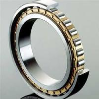 Single Row Full Complement Cylindrical Roller Bearings ID over 150mm Manufactures