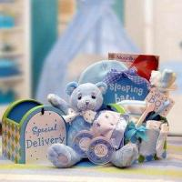 Gift Basket Drop Shipping 890512-Blue A Special Delivery New Baby Gift set - Blue Manufactures