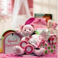 Gift Basket Drop Shipping 890512-Pink A Special Delivery New Baby Gift set - Pink Manufactures