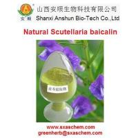 Buy cheap Standard extract Scutellaria Baicalensis Extract from wholesalers