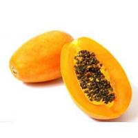 Buy cheap Fruit and vegetable Pawpaw powder from wholesalers