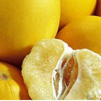 Fresh Fruit Sweets Grapefruits for Sale Manufactures