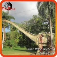Buy cheap Theme exhibition life size animatronic realistic diplodocus dinosaur from wholesalers
