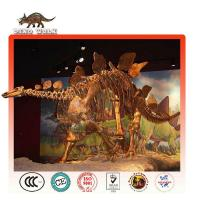 Buy cheap Amusement Equipment Artificial Stegosaurus Dinosaur Fossils for Sale from wholesalers