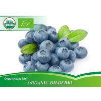 Organic Bilberry Manufactures