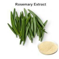 Rosemary Extract Manufactures