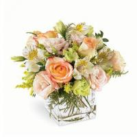 Wonders Pastel Flower Bouquet Manufactures