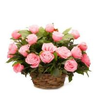 Buy cheap Hot Pink Rose Basket from wholesalers