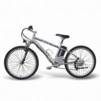 Electric Bike with 250W Motor Manufactures